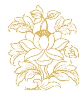 lotusbewerkt12