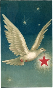 Dove-with-Star-Image-2-GraphicsFairy